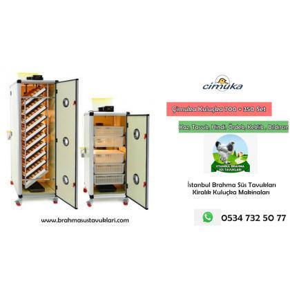 Kiralık Tavuk Kuluçka Makinası